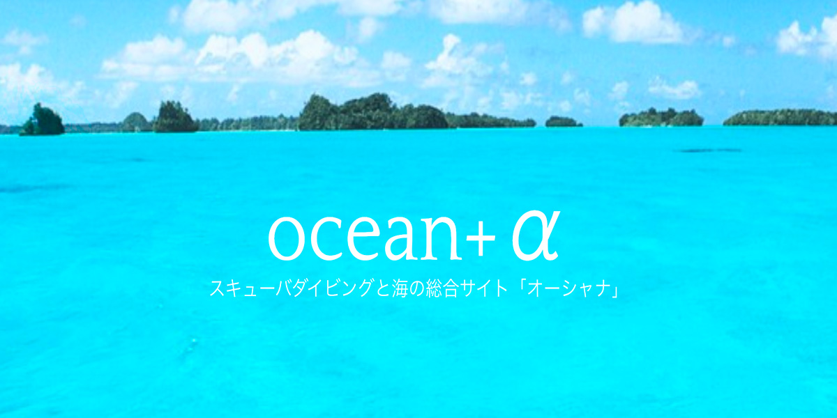スキューバダイビングと海の総合サイト「オーシャナ」にてご紹介いただきました
